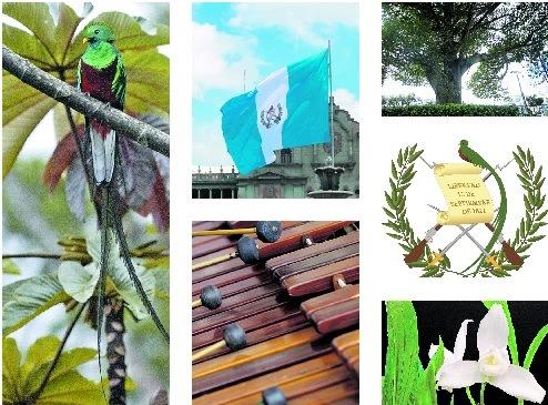 Conozca los símbolos Patrios de Guatemala