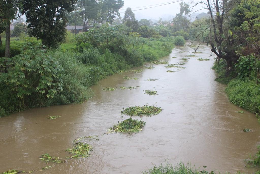 Aumenta nivel de ríos luego de 72 horas de lluvia