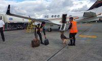Agentes antinarcóticos, con perros adiestrados, revisan avionetas privadas en el aeropuerto internacional La Aurora, en la zona 13 (Foto Prensa Libre: PNC).