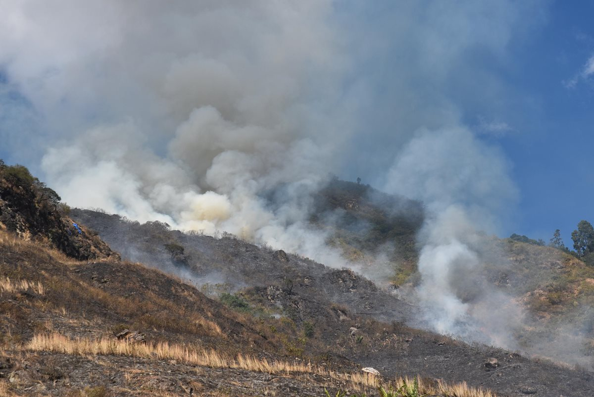 El incendio se produjo en el cerro Potrero en Santa Catarina Palopó, Sololá. (Foto Prensa Libre: Ángel Julajuj)