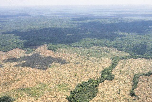 Imagen aérea de la Biosfera Maya, situada en Petén. (Foto Prensa Libre: Hemeroteca PL)