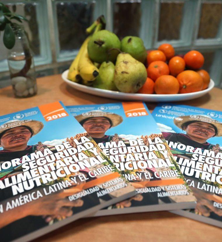 """El """"Panorama de la seguridad alimentaria y nutricional en América Latina y el Caribe 2018"""" fue presentado este miércoles en Santiago de Chile. (Foto Prensa Libre: EFE)"""