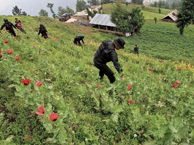 Después de décadas de conflictividad en Ixchiguán y Tajumulco, San Marcos, el Ejército y la PNC retomaron el control, destruyeron fortificaciones y decomisaron armamento, mientras los vecinos viven en relativa calma. (Foto Prensa Libre: HemerotecaPL)