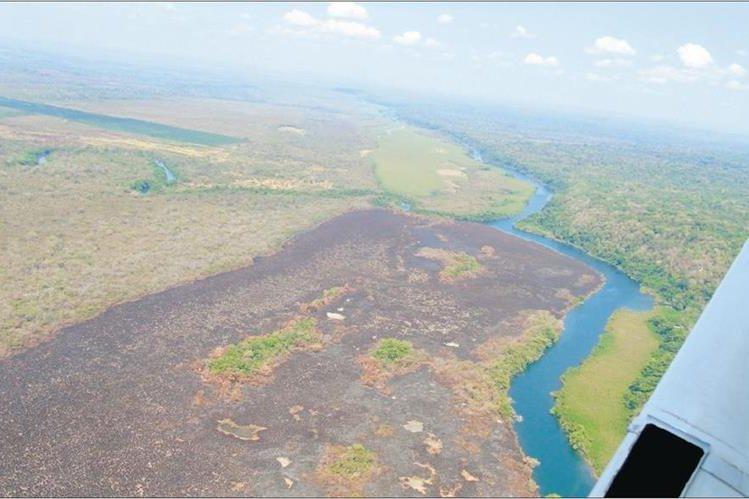 La Biosfera Maya ha resultado afectada drásticamente debido al uso del suelo para siembras y la ganadería. (Foto HemerotecaPL)