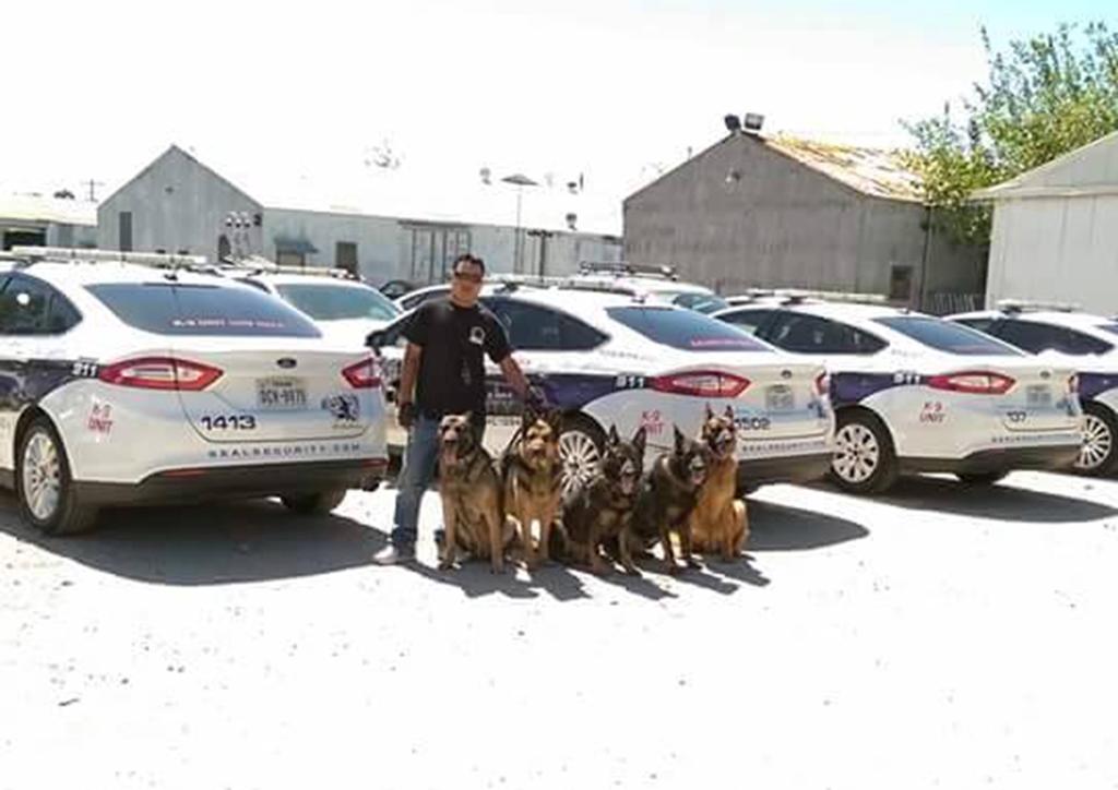 Sololateco consigue sueño americano al entrenar perros policías
