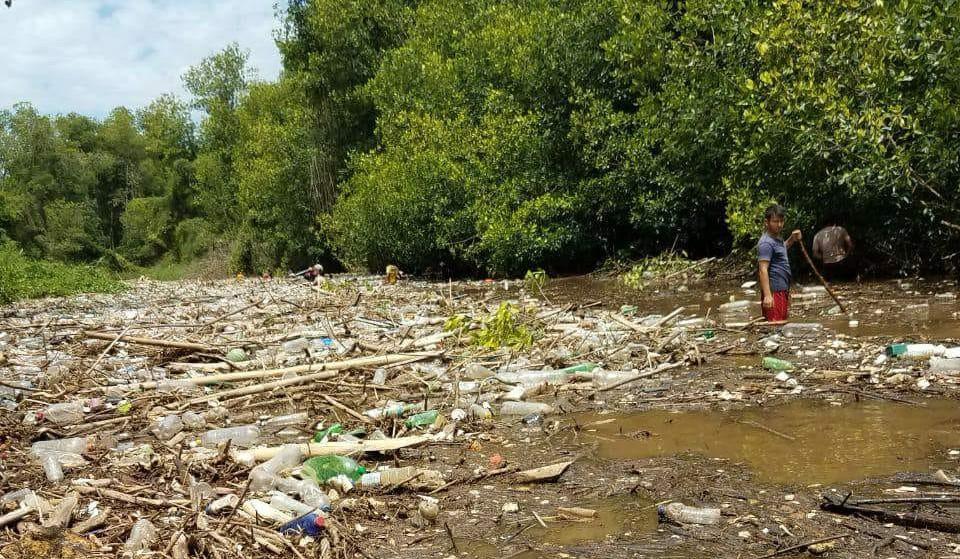 Contaminación del río Ocosito asfixia plantaciones de mangle y merma la pesca artesanal