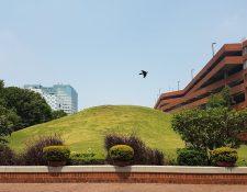 En la zona 7 y 11 de la ciudad es posible ver montículos de templos de Kaminaljuyú. (Foto Prensa Libre: Sandra Vi)