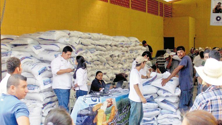 El Maga tiene destinados unos Q200 millones para distribuir, a través del programa de subvención agropecuaria, entre más de un millón de campesinos. (Foto Prensa Libre: Hemeroteca PL)