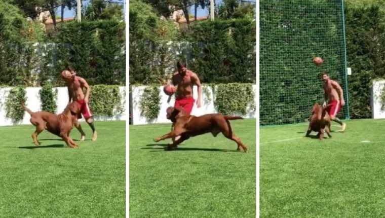Lionel Messi se divierte jugando en el patio de su casa junto a su perro Hulk. (Foto Prensa Libre: Instagram antoroccuzzo)