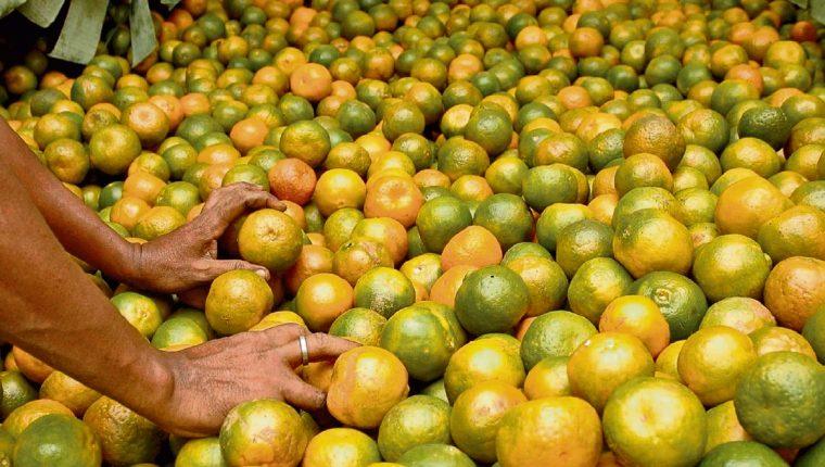 Frutas Registran Alzas Prensa Libre