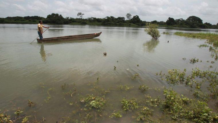Se trata de un problema político más que económico el dar soluciones al problema, dice la OMS. (Foto Prensa Libre: Hemeroteca PL)