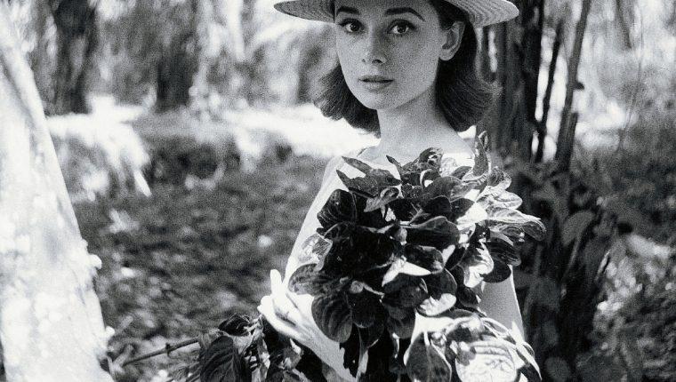 Audrey Hepburn Africa