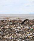 Punta de Manabique se ha convertido en un vertedero por la contaminación en el río Motagua. (Foto Prensa Libre: Hemeroteca PL).