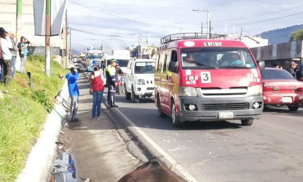 Lugar donde fue arrollada la vaca en el km 209 de la ruta entre Quetzaltenango y San Marcos. (Foto Prensa Libre: Mynor Toc).