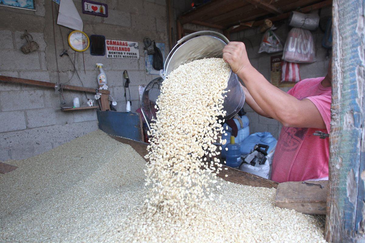 Ministerio de Economía autoriza importación de 75 mil toneladas métricas de maíz blanco con arancel 0% para suplir deficiencia en el mercado nacional