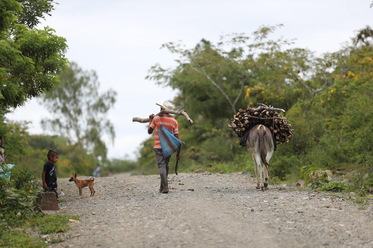 Familias del Corredor Seco han optado por buscar en EE. UU. una oportunidad de vida, luego que los últimos años la sequía les ha golpeado con fuerza y los ha dejado sin alimentos. (Foto Prensa Libre: Érick Avila)