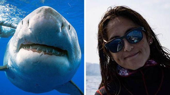 Kimberly Jeffries era parte del equipo que nadó con el enorme tiburón blanco en Hawái. REUTERS/MARK MOHLER