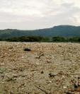 Las últimas lluvias han originado el aumento de la contaminación en el Lago de Amatitlán. (Foto Prensa Libre: Cortesía).