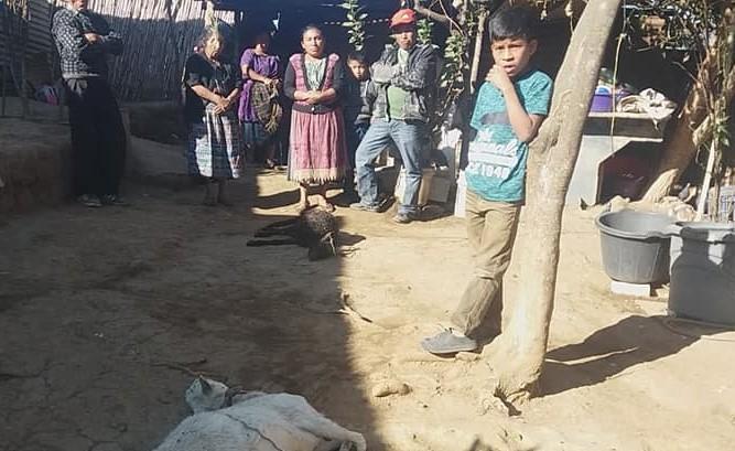 Vecinos de San Andrés Itzapa, Chimaltenango, están alarmados por la muerte de dos cabras. (Foto Prensa Libre: Cortesía)