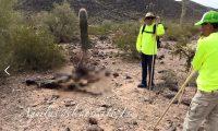 Águilas del Desierto es una organización que se dedican a la búsqueda y rescate de migrantes perdidos. (Foto Prensa Libre: Hemeroteca PL)