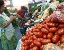 El precio del tomate en el mercado local registró un incremento en noviembre, que se reflejó en el IPC. (Foto Prensa Libre: Hemeroteca)