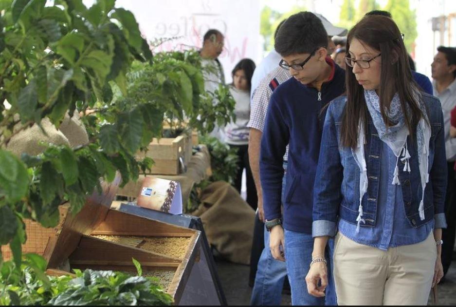 El Coffee Weekend está dirigido a consumidores finales de café, baristas y catadores potenciales. La entrada es gratuita. (Foto Prensa Libre: Hemeroteca)