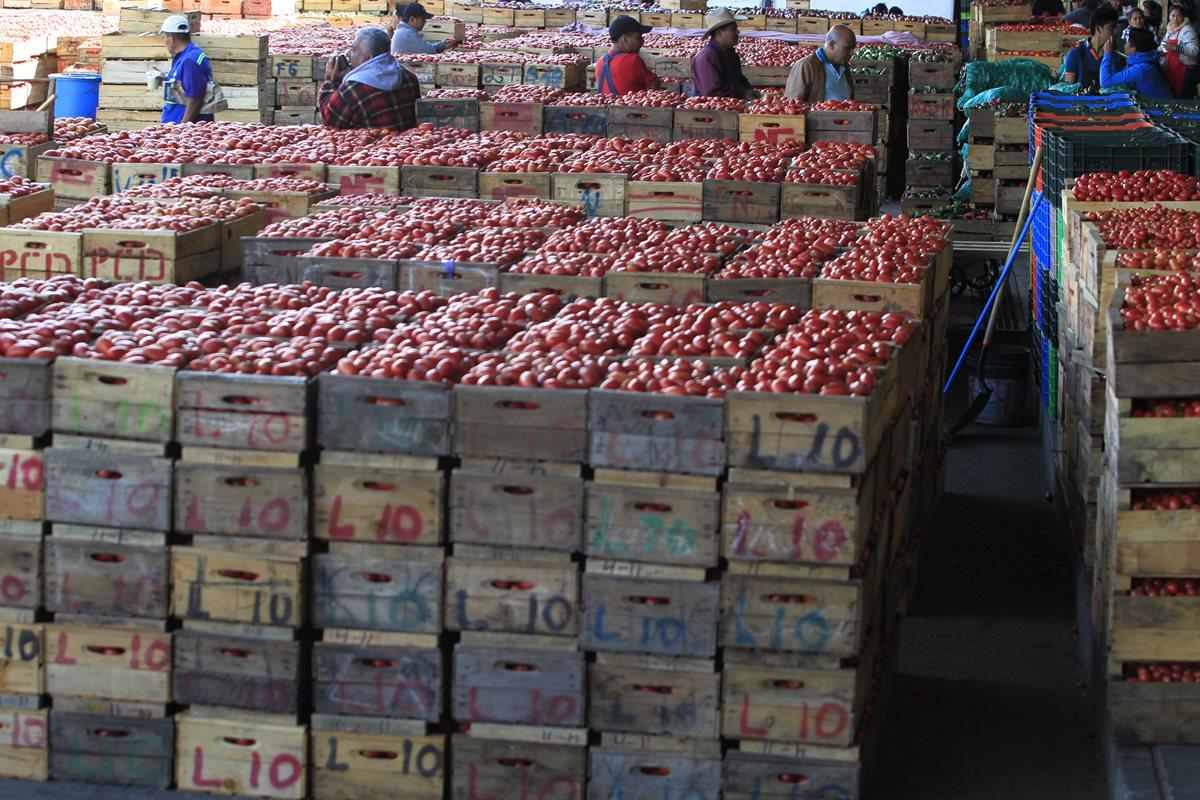 La razón por la que quizá sea el peor momento para los productores de tomate