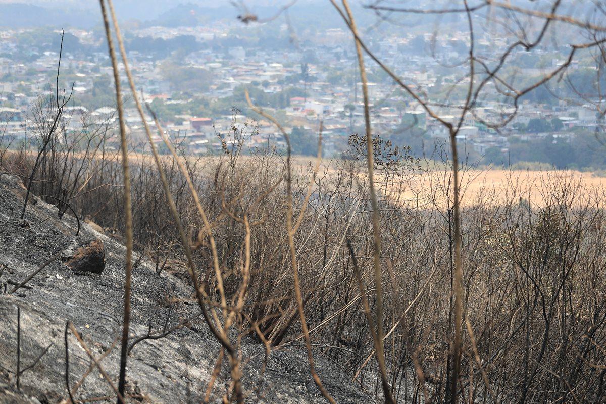 La deforestación es una de las causas por las que las fuentes de agua se secan en el país y los incendios son una de las formas de deforestar. (Foto Prensa Libre: Hemeroteca)
