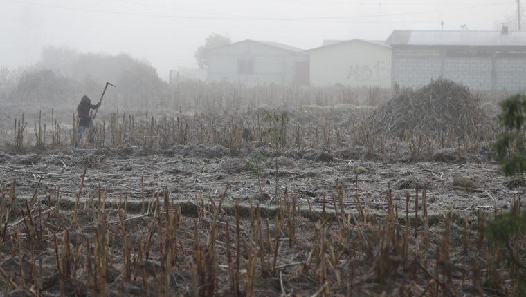 La helada que cayó en los municipios de la zona norte de Quetzaltenango formó una fina capa de escarcha. (Foto Prensa Libre: Mynor Toc)