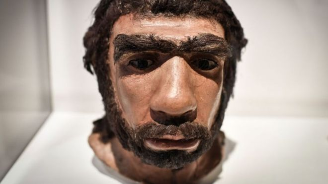 Los neandertales vivieron en Europa y el suroeste y centro de Asia. (GETTY IMAGES)