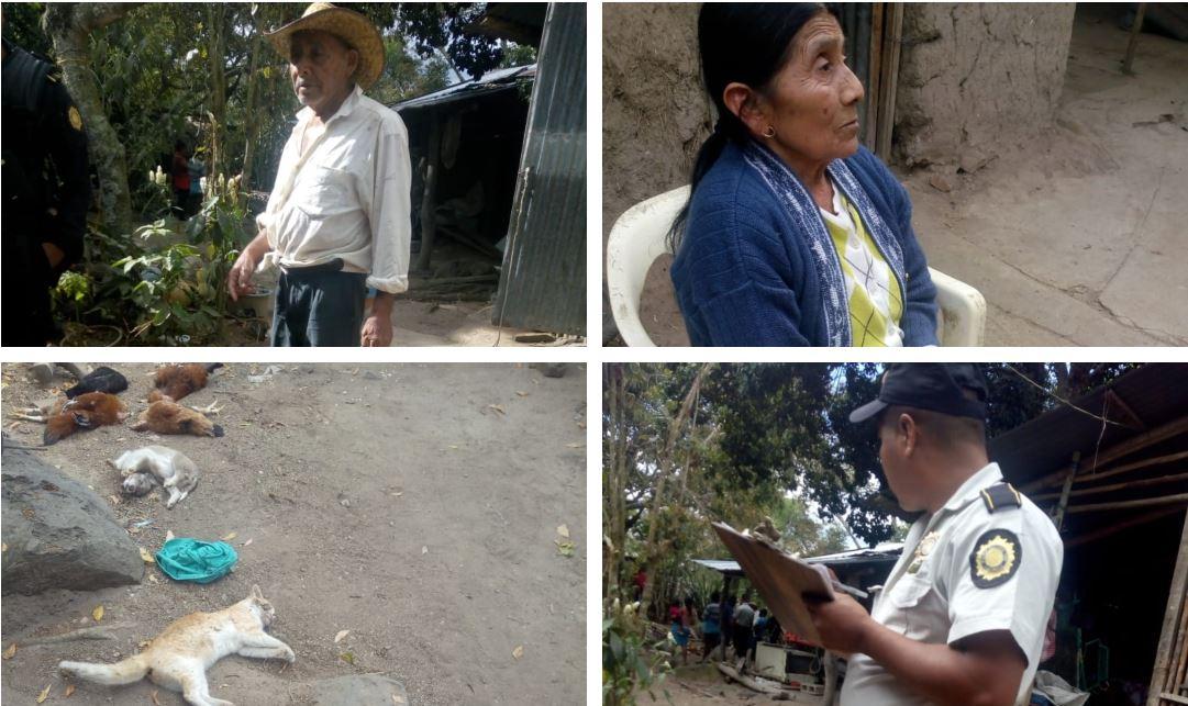 Perros, gatos y gallinas fueron envenenados en el patio de una vivienda en El Pinalito, Chiquimula, propiedad de Roberto Díaz Pérez y Abelina Pérez García. (Foto Prensa Libre: Mario Morales)