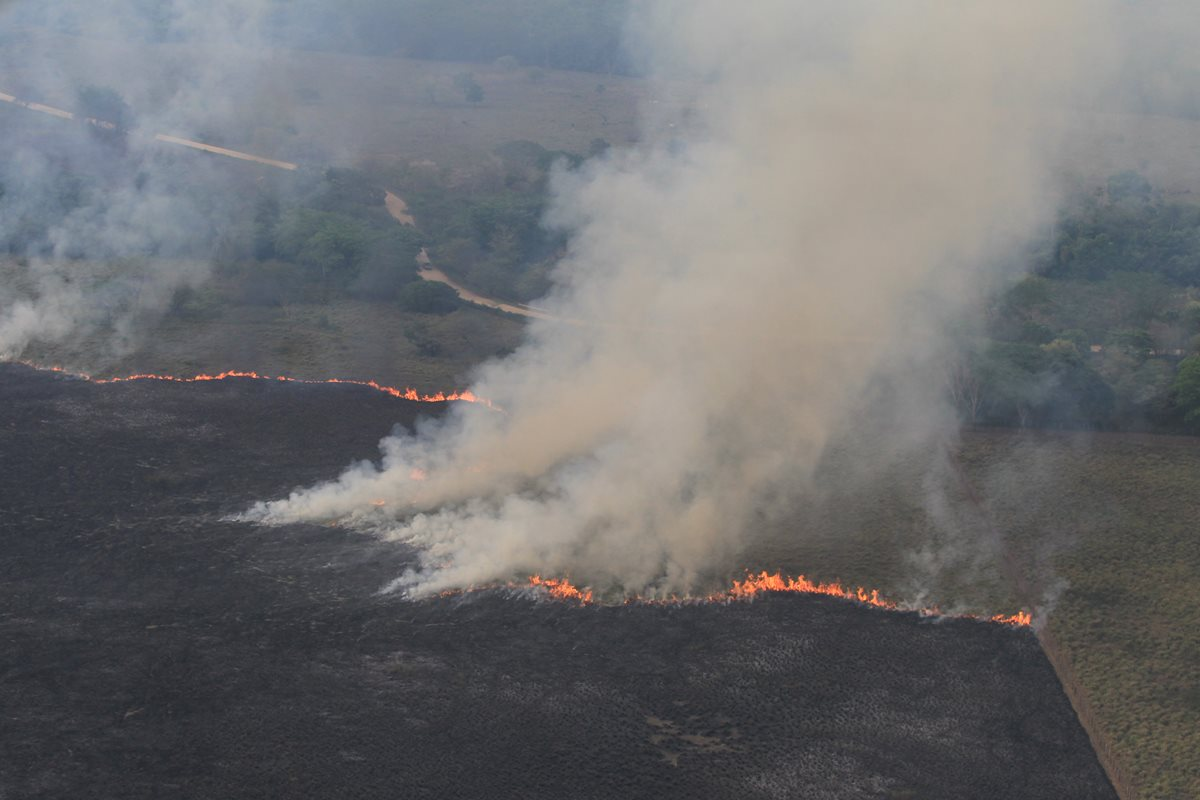 La mayoría de incendios forestales son provocados por las personas que usurpan el parque Laguna del Tigre y que intentan apropiarse de grandes extensiones de tierra. (Foto Prensa Libre: Esbin García)