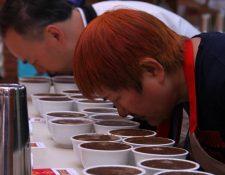 Los empresarios taiwaneses participaron en la catación de cafés, realizaron ruedas de negocios con productores nacionales y visitarán fincas productoras. (Foto Prensa Libre: Cortesía Anacafé)
