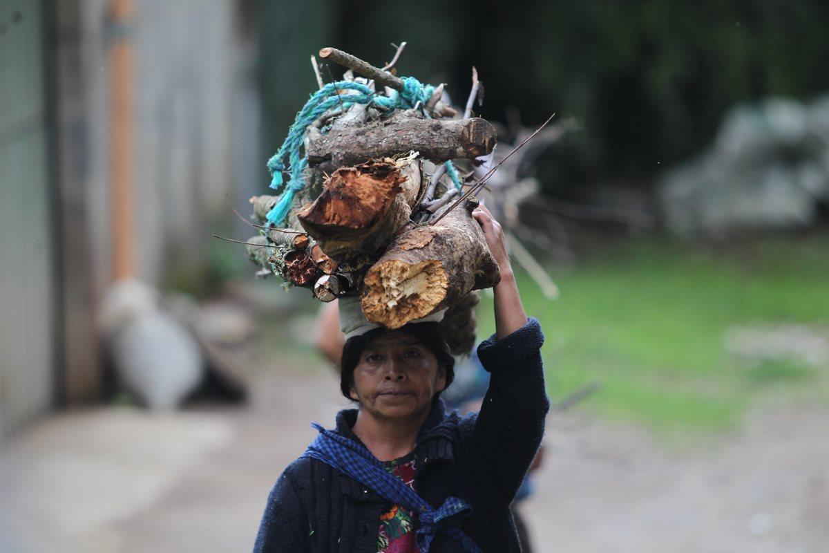 El uso de leña es una práctica común en las comunidades situadas alrededor de la cordillera Alux. (Foto Prensa Libre: Érick Ávila)