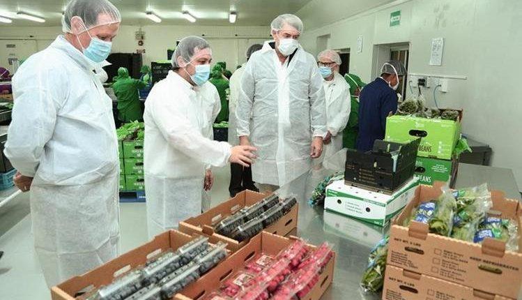 El sector comercio fue la principal actividad que atrajo capitales por inversionistas extranjeros hasta septiembre del 2018, según el computo del Banguat. (Foto Prensa Libre: Hemeroteca)