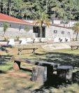 El Hogar Seguro Virgen de la Asunción albergaba alrededor de 600 niños y adolescentes. La mayoría mujeres. (Foto Prensa Libre: Hemeroteca PL)