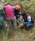 Con ayuda de algunos vecinos, los socorristas lograron rescatar al perro que por accidente cayó a un pozo artesanal en un terreno baldío, en Sumpango, Sacatepéquez. (Foto Prensa Libre: Víctor Chamalé)