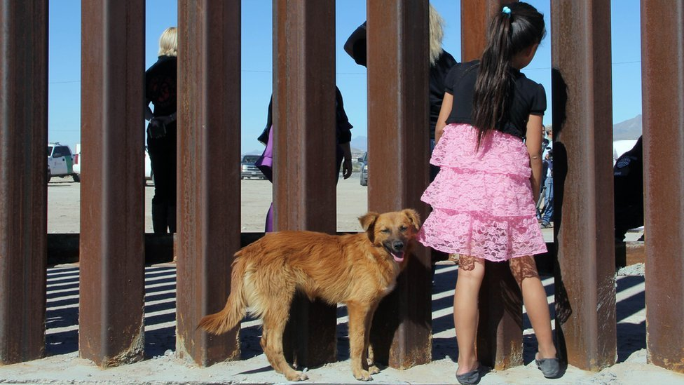 Cada vez se rechazan más solicitudes de asilo en EE. UU. GETTY IMAGES