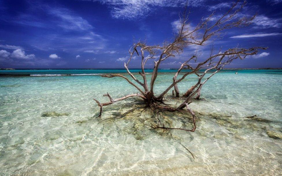 Aruba, Bonaire y Curazao son uno de los destinos favoritos de los turistas que visitan el Caribe. GETTY IMAGES