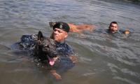 Los agentes K-9 son sometidos a diferentes ejercicios para que se relajen. (Foto Prensa Libre: Mingob).