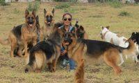 Paola Mármol, propietaria de Perrópolis Hotel, se dedica a rescatar perros y gatos. Además tiene servicio de hospedaje.