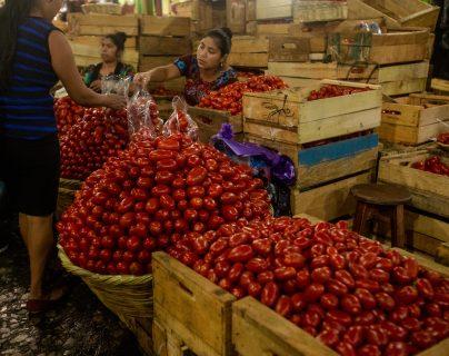 La caja de tomate se cotizó en Q187 en el Mercado La Terminal de la zona 4 y en julio registró un incremento, según los reportes del Maga e INE. (Foto Prensa Libre: Hemeroteca)