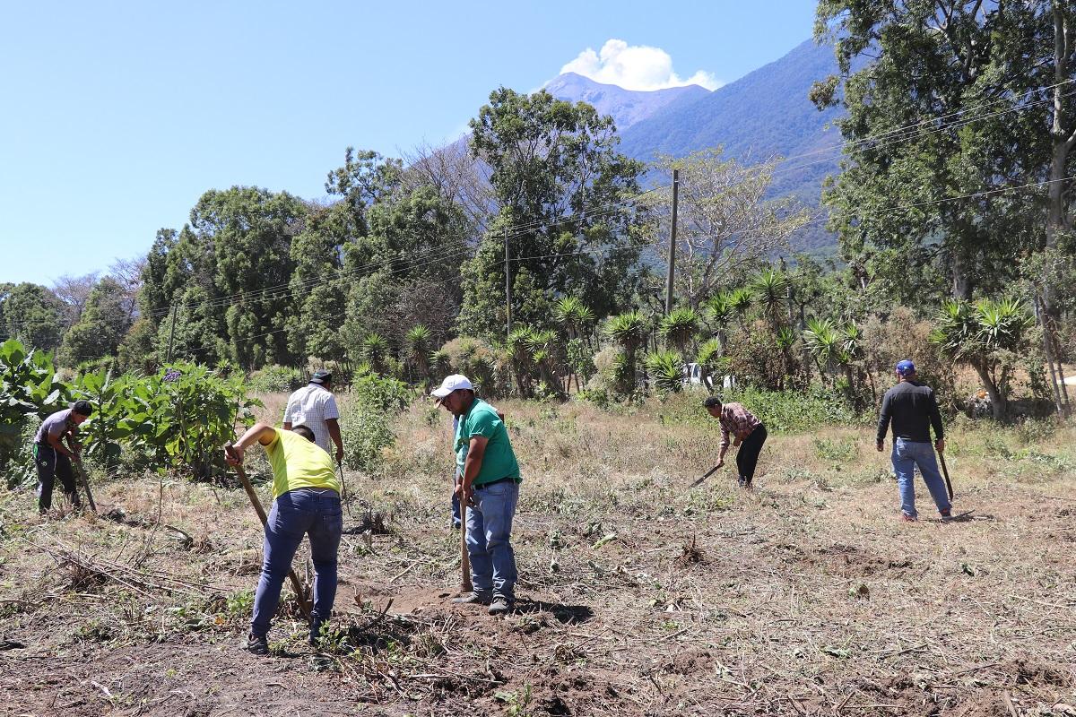 Personas afectadas por la erupción del Volcán de Fuego limpian terreno donde se construirán viviendas. (Foto Prensa Libre: Julio Sicán).