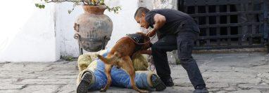 Instructores de la empresa Blackthorne Security llevan a cabo una muestra de entrenamiento ante las autoridades municipales de Antigua Guatemala. (Foto Prensa Libre: Julio Sicán).