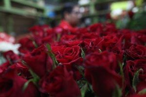 El ramo de rosas rojas es el más solicitado en el Día del Cariño. (Foto Prensa Libre: Érick Ávila)