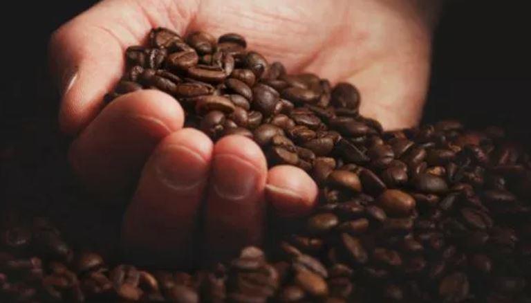 Según cafetaleros colombianos si se logra que el país fije el precio de referencia para la venta de su café tendrá una actividad más sana. (Foto Prensa Libre: Hemeroteca)