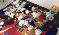 El domingo recién pasado, Comunidad Gatuna efectuó jornada de castración. (Foto Prensa Libre: Cortesía)
