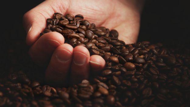 La exportación de café para 2019, será de 4.4 millones de quintales, según la estimación de Anacafé. (Foto Prensa Libre: Hemeroteca)