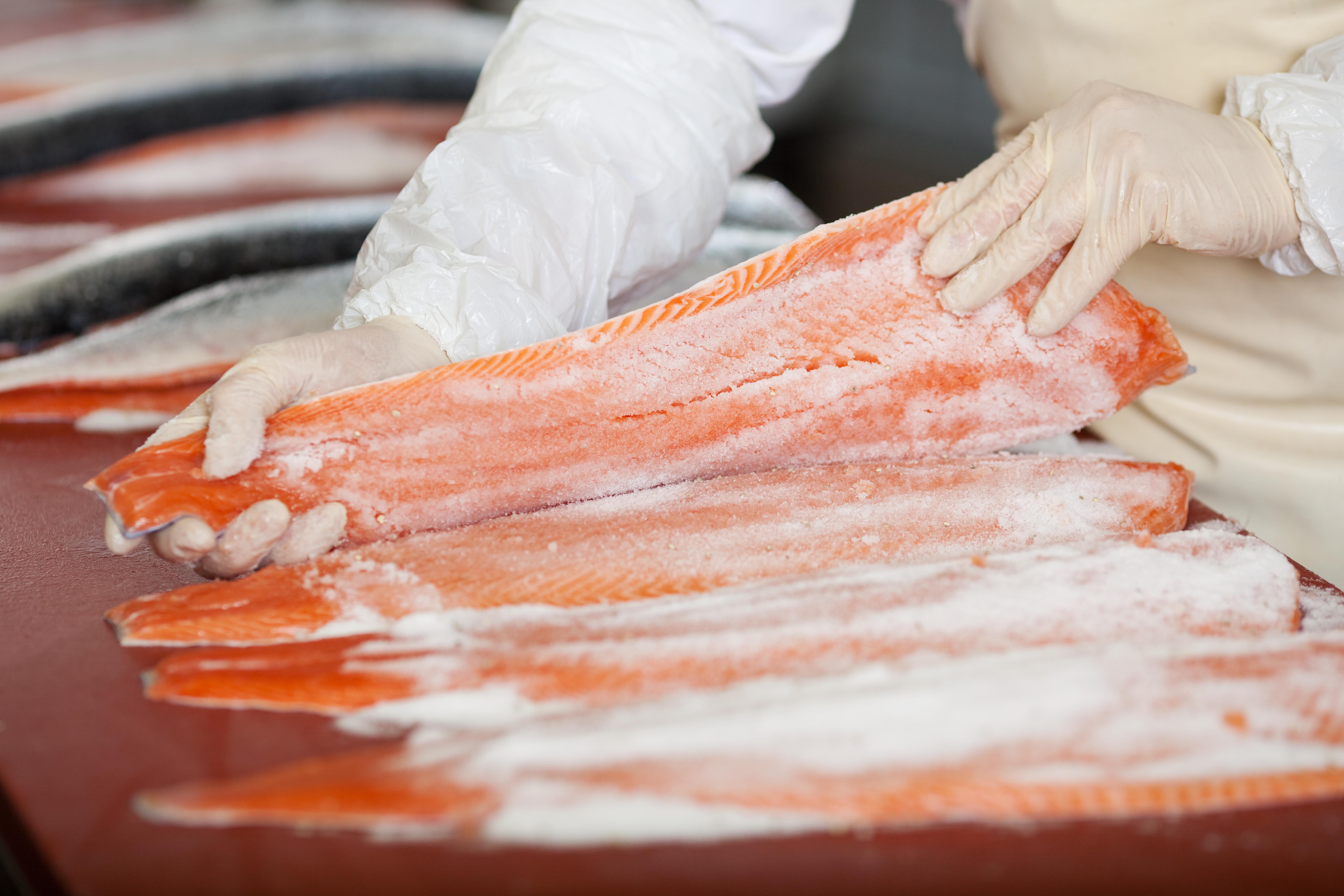Parte del producto saldrá del esqueleto del pescado para convertirse en concentrado para animales. (Foto Prensa Libre: Hemeroteca)