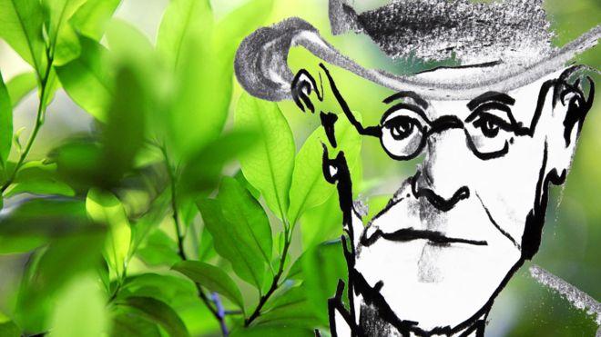 Freud quiso investigar a fondo la planta que tradicionalmente se usaba en Sudamérica. (GETTY IMAGES)